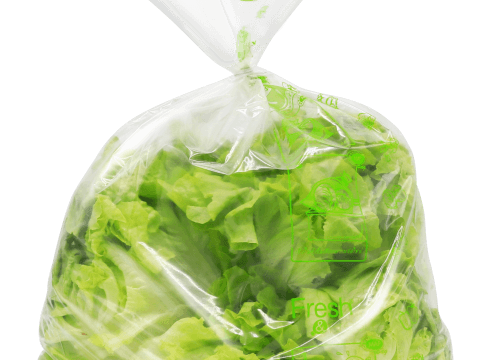 Fresh & Fresh ถุงยืดอายุผักและผลไม้
